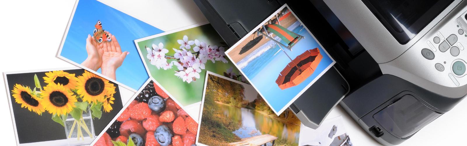 Программы для создания и редактирования фотографий ружье делалось