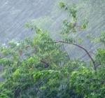 непогода на Луганщине