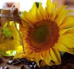 Необычные свойства обычного подсолнечного масла