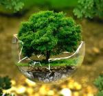 Луганская, экология