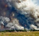 Луганская, экология, лесные пожары