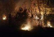 пожары на луганшине