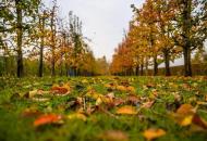 погода в октябре