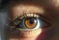 цвет глаз и алкоголизм: связь