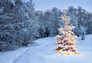 погода на Рождество