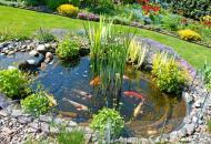 пруд садовый