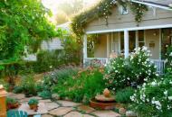 Красивый сад - выбор растений для окружающей среды
