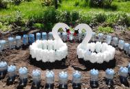 Как сделать цветник из пластиковых бутылок на даче?