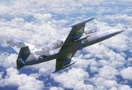 самолет-л-39