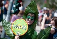 легализация-марихуаны