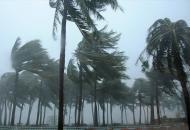 шторм гаити