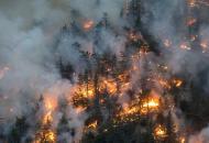 пожар в альпах
