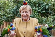 меркель и попугаи