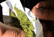 наркотические средства