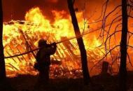 На Луганщине продолжается тушение 7 основных очагов