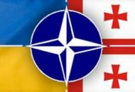 НАТО усилит помощь Украине и Грузии
