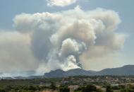 Греция, лесные пожары