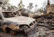 озвучен размер компенсаций, которые выплатят жертвам пожаров на Луганщине