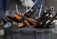 Луганская, оружие