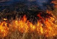 На Донбассе нацгвардейцы задержали поджигателя