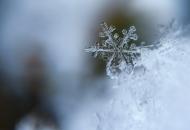 погода на Луганщинев ближайшие дни