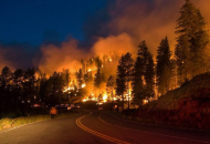 Россия, лесные пожары