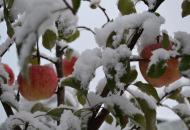 Зима будет ранней, снежной и лютой