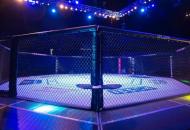 ВДагестане во время массовой дракисмертельные раненияполучилидвое бойцов MMA