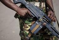 В Нигерии боевики похитили около 200 школьниковв городе Тегина