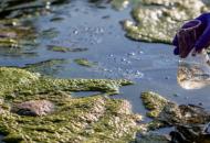 В Украине увеличили размер штрафов за загрязнение земель