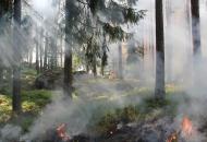 Луганская, ГСЧС, лесные пожары