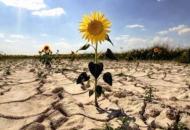 Как изменится климат Украины через 50 лет