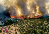 Турция, лесные пожары