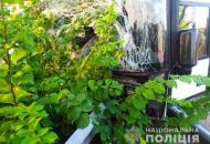 Под Харьковом автобус с туристами влетел в отбойник