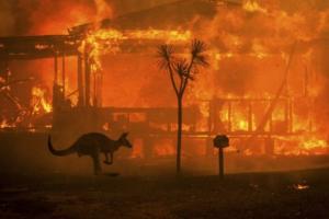 Австралия, лесные пожары