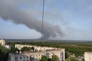 Лесной пожар в окрестностях Северодонецка
