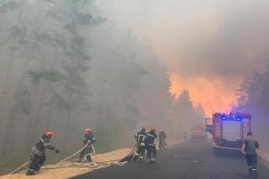 Украинаполучила гарантии безопасности для тушения пожаров на Луганщине