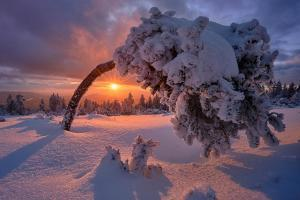 прогноз погоды, зима
