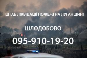 пожар луганская область
