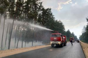 лесной пожар луганщина