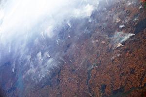 пожары-амазония