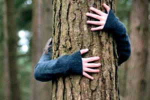 Удачно спрятался:В Рубежном в лесупотерялся5-летний мальчик