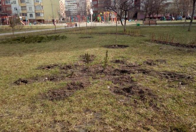 Киев, вандализм, сквер