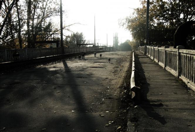 лисичанск-мост-лиссода