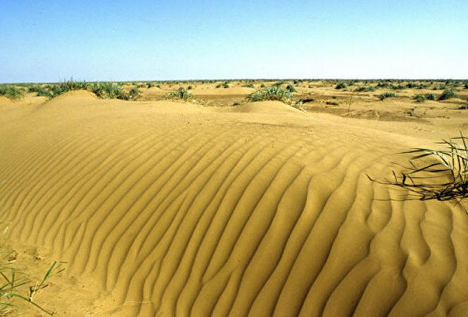 пустыня