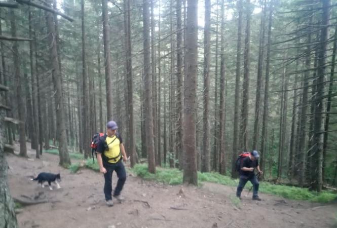 поиски в горах