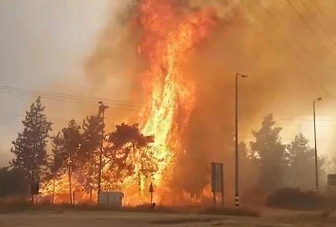 пожар иерусалим