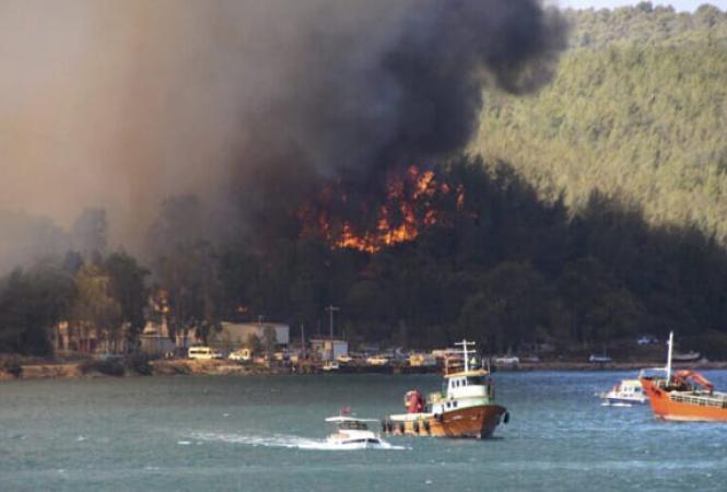 турция пожары
