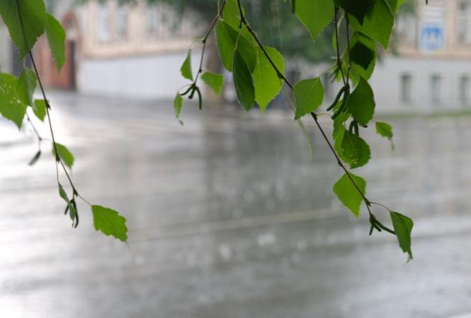 лето дождь