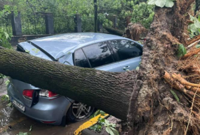 Последствия урагана, накрывшего Львов